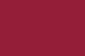 Marconsul-fident-servicios-inicios (5)